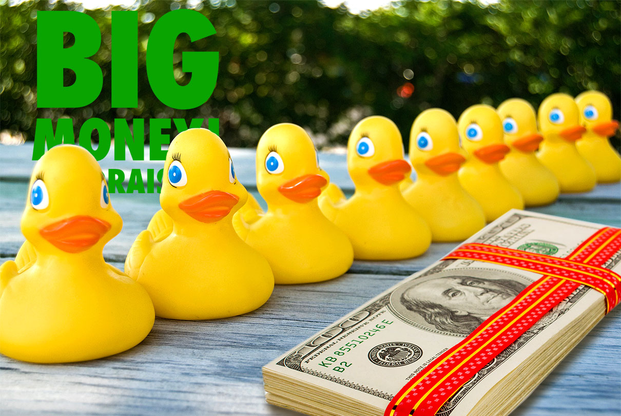 All nonprofits should have their ducks in a row.